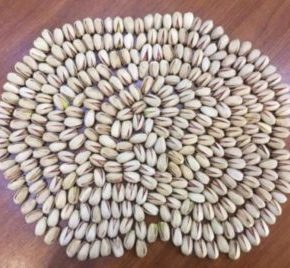 pesta nut price in bangladesh